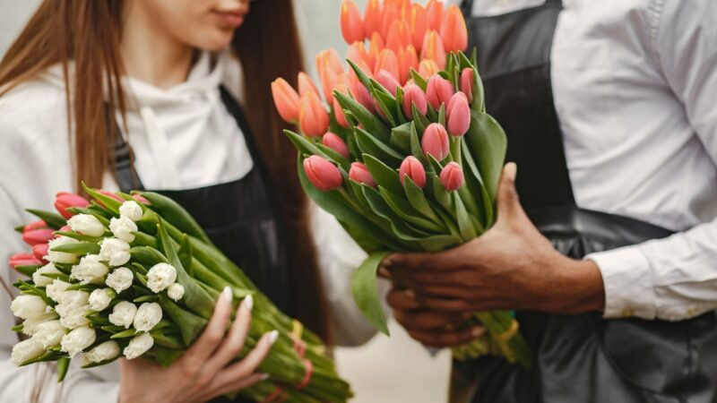 TOP 4 Beautiful Flowers And Their Amazing Benefits!!